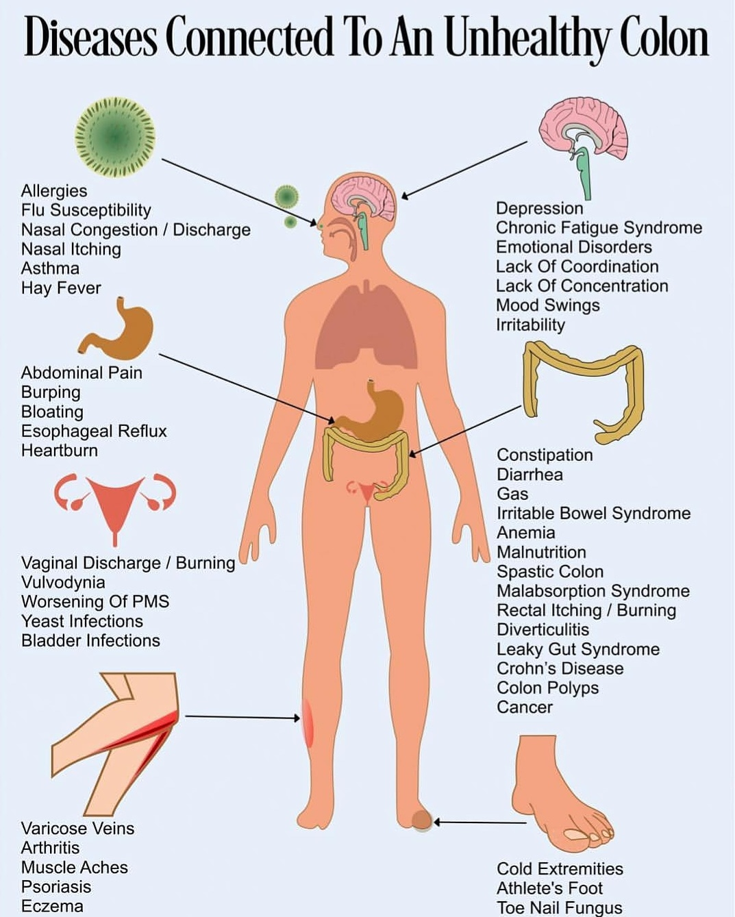 https://healthandbeauty102.com/detoxificationbringshealthygut/